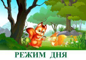 knopka-belochka-rezhim-dnya