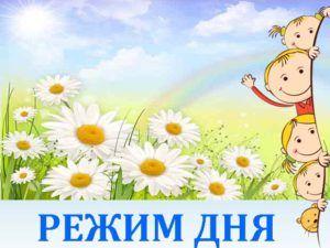 knopka-romashka-rezhim-dnya